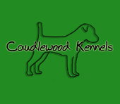 Caudlewood Kennels - Breeders of Purebred Parson Russell Terriers